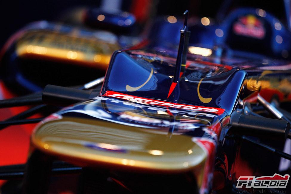 Detalle del morro del Toro Rosso STR7