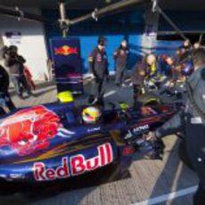 Jean-Eric Vergne se estrena con el Toro Rosso en Jerez