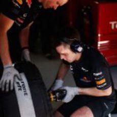 Mecánicos cambian una rueda al monoplaza de Mark Webber
