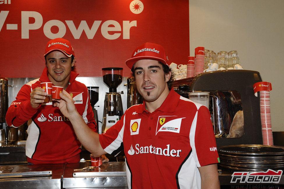 Felipe Massa y Fernando Alonso brindan en Australia