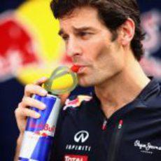 Mark Webber se hidrata antes de los entrenamientos