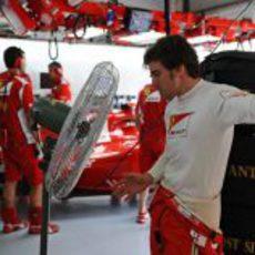 Fernando Alonso trata de refrescarse