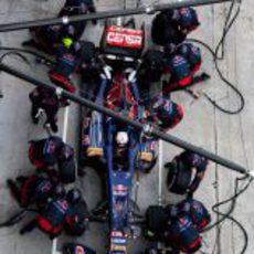 Daniel Ricciardo hace una de sus paradas en Sepang