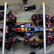Sebastian Vettel realiza un 'pit stop' en Sepang