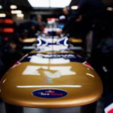 El logo de Toro Rosso en el morro de su coche