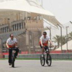 Paul di Resta reconoce la pista en bicicleta