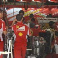 Los mecánicos de Ferrari ponen a punto el F2012 en Montmeló