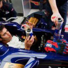 Daniel Ricciardo con su bebida en su STR7