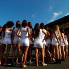 'Pit babes' del GP de Europa 2012 reunidas