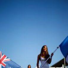 Las 'pit babes' del GP de Europa con las banderas