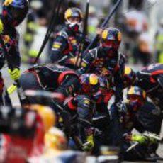 Los mecánicos de Red Bull listos para la parada de Vettel