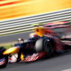 Mark Webber exprime el RB8 en Hungaroring