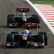 Los dos Toro Rosso en carrera