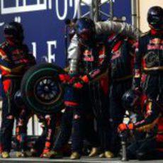 Los mecánicos de Toro Rosso preparados