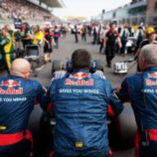 Los mecánicos de Toro Rosso empujan el STR7 en la parrilla
