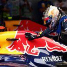Sebastian Vettel acaricia su toro