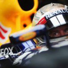Sebastian Vettel concentrado dentro de su RB8