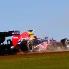 Mark Webber exprime el RB8 en Austin