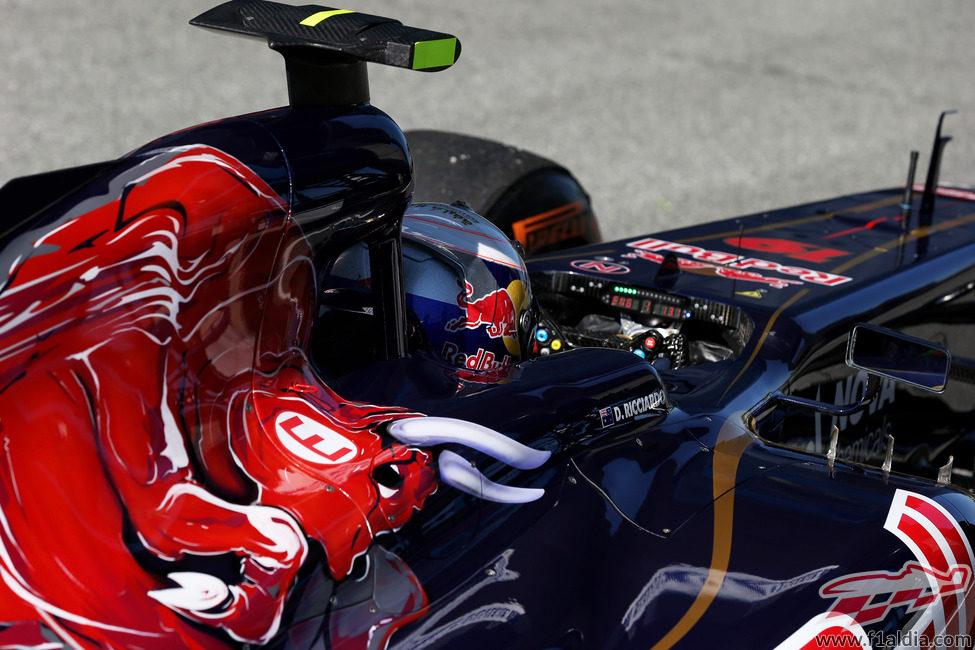 Decoración clásica del Toro Rosso STR8