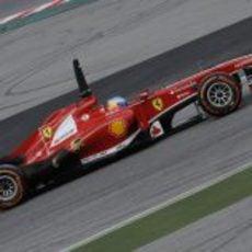 Plano lateral del Ferrari F138 en manos de Fernando Alonso