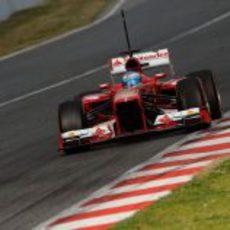 Fernando Alonso a final de recta con el F138