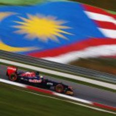 Jean-Eric Vergne y su Toro Rosso sobre el asfalto del Circuito de Sepang