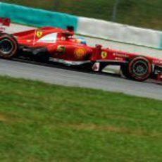 Fernando Alonso con el compuesto duro en Sepang
