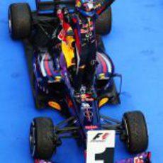 Sebastian Vettel, ganador del Gran Premio de Malasia
