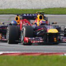 Pelea entre los compañeros de Red Bull