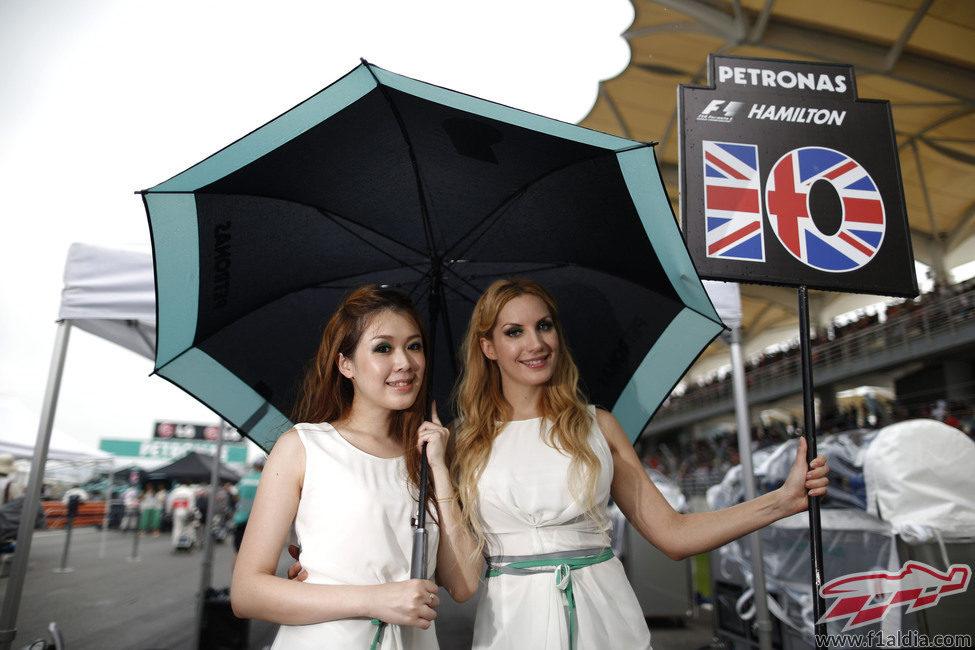 Pitbabes con el cartel de Lewis Hamilton