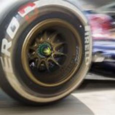 Detalle de la llanta de Toro Rosso