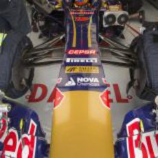 Daniel Ricciardo metido en su monoplaza