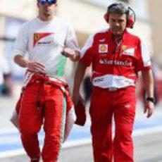 Fernando Alonso camina hacia la parrilla