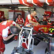 Los mecánicos de Ferrari trabajan en el F138