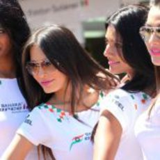 Las 'pitbabes' de Force India en Mónaco