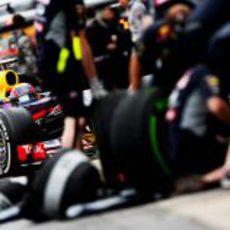 Mark Webber se asoma entre neumáticos