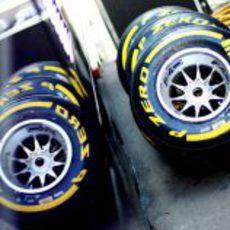 Neumáticos blandos para Alemania