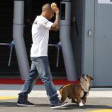 Lewis Hamilton pasea a Roscoe por el paddock de Monza