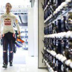 Daniel Ricciardo llega al box de Toro Rosso