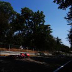 Neumáticos duros para Daniel Ricciardo