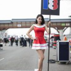 La 'grid girl' de Jean-Eric Vergne en Corea