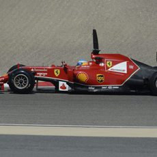 Pruebas para Fernando Alonso en Sakhir