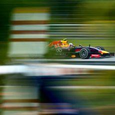Daniel Ricciardo a través de la vegetación durante los Libres 3 del GP de Malasia