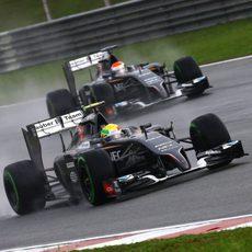 Los dos Sauber ruedan muy cerca en Sepang