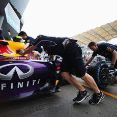 Daniel Ricciardo vuelve a su 'box'
