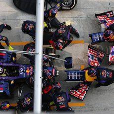 Cambio de alerón delantero para Daniel Ricciardo