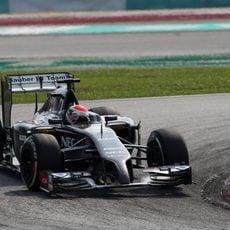 Sin puntos para Adrian Sutil en Malasia