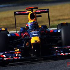 Webber en su Toro Rosso