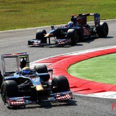 Los dos Toro Rosso