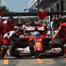 Fernando Alonso cambia neumáticos